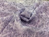 Органза - жатка сиреневый
