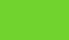 фетр зеленый (салат)